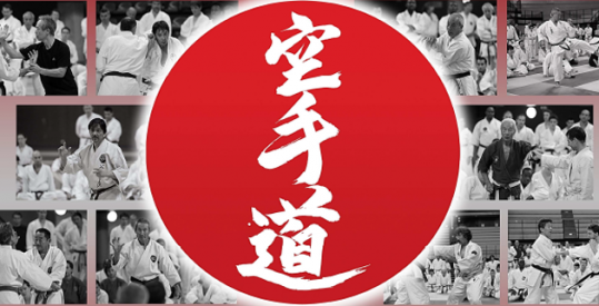 Stage National Experts Japonais - accroche
