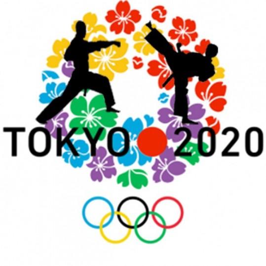 """Résultat de recherche d'images pour """"karaté olympique 2020"""""""